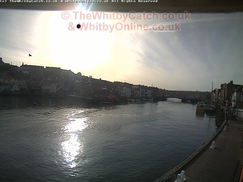 Whitby Sun 10th April 2011 09:07.